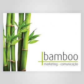 Bamboo Marketing + Comunicação